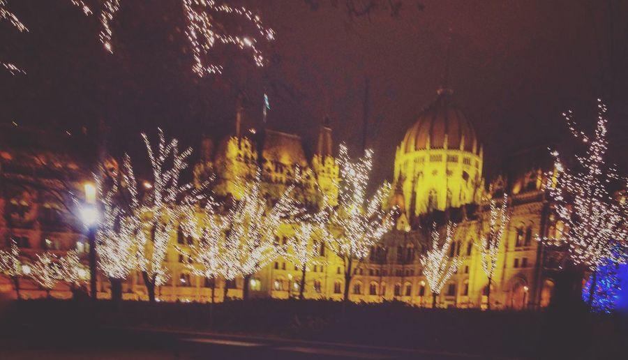 Too cold to keep my hands steady. Budapest Budapest, Hungary ParliamentHouseofHungary WinterinBudapest Christmaslighta First Eyeem Photo