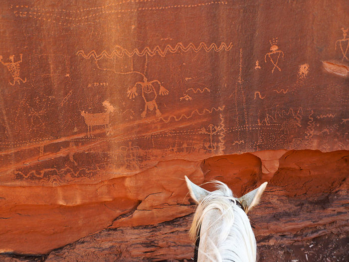 Horse Horses Indian Rock Paintings Monument Valley Red Landscape Rock Rrock Paintingock Formations The Great Outdoors - 2017 EyeEm Awards