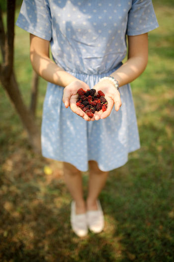 Low section of woman holding berries while standing in lawn