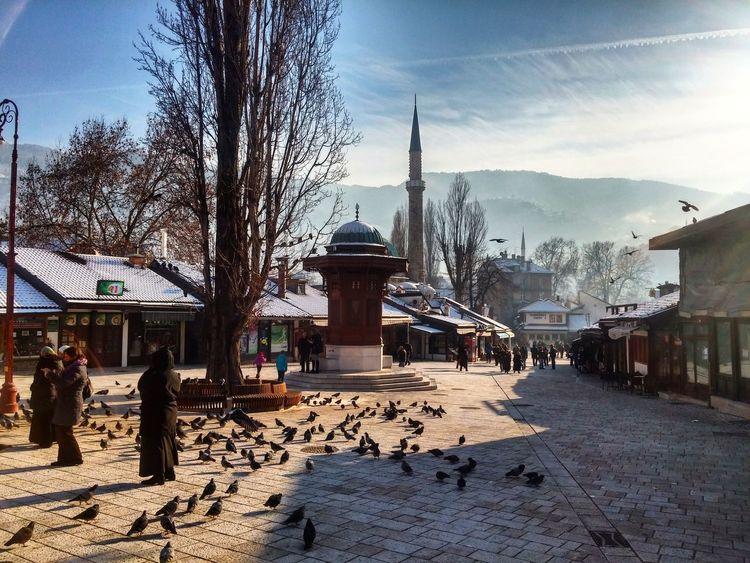 Sarajevo Oldtown Old Craft Destination Sarajevo Sebilj Bascarsija Pigeons Birds Showcase: January Winter January Beautiful Photographylovers