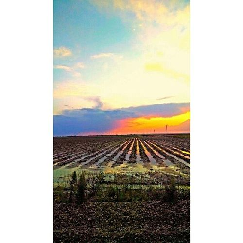 This is home. Southeastmissouri Sikeston Missouri Backroads Fuckrain Photography Art Missouriphotography Picoftheday Instapic Sunset Sunsets Clouds Beautiful