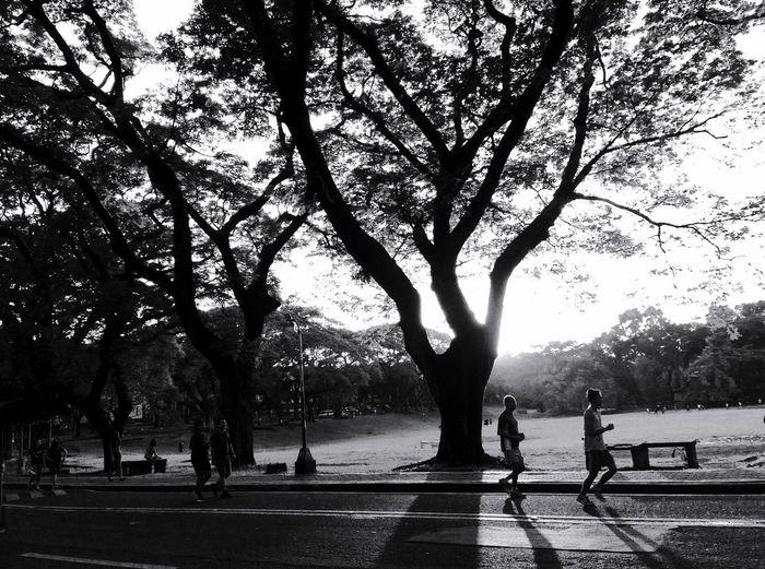 Darkness And Light Blackandwhite Streetphotography Streetphoto_bw People Peoplephotography Relaxing Eyeem Philippines Eye4photography  Hugging A Tree
