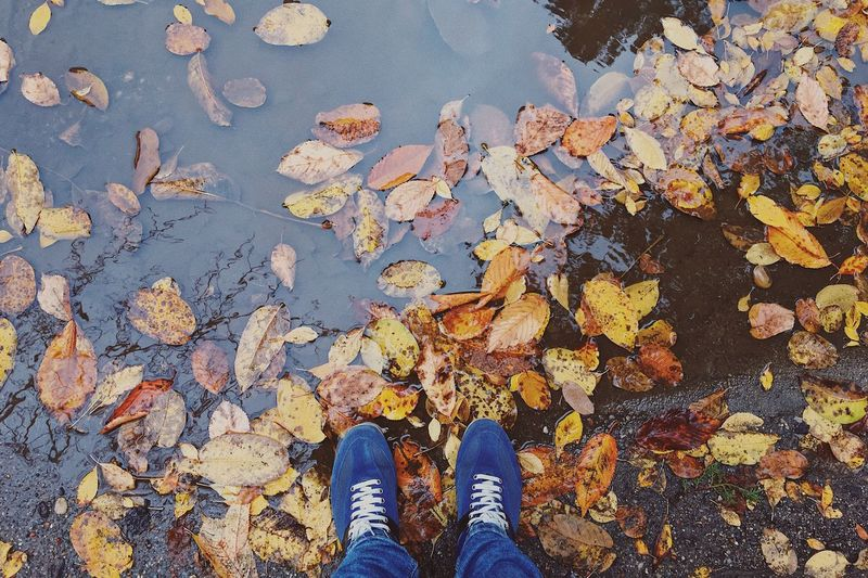 Low Section Of Man By Falling Autumn Leaves In Lake