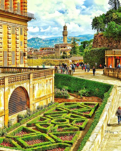 Firenze Florence Boboli Garden Boboligardens Boboli Italy Italia Photobydperry Landscape Thearchitect-2016-eyeemawards