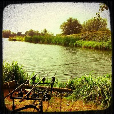 Golden days Fishing Angling Ukigers Bedsigers