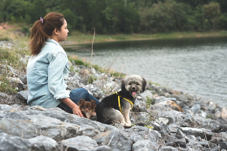 Happy young hipster asian woman with her funny dogs sitting on rock beside the reservoir. Stylish girl traveling with pets for rest and relax in summer vacation with beautiful view and river. Solid Rock Rock - Object Domestic Animals Pets Domestic Mammal Canine Dog Casual Clothing Real People Sitting Day Nature Outdoors Asian  Young Women Young Animal Girl River Friendship Lifestyles Vacations Chihuahua Enjoying Life