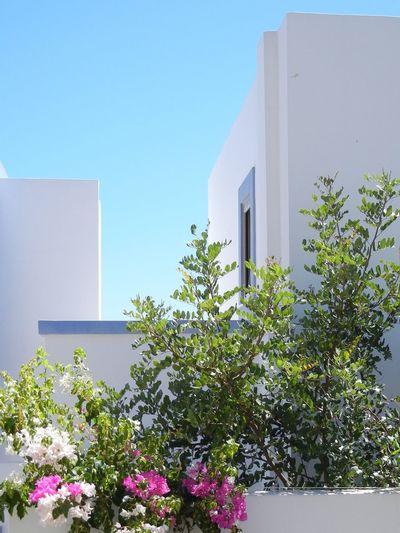 Griechenland, Kos Griechenland Greece Sun Heaven Summer Summertime Holiday Summercollection Pastel Power