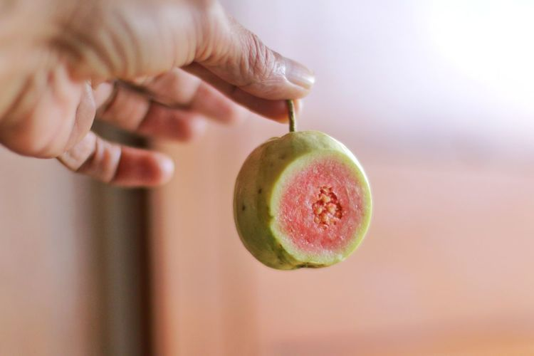 Close-up of hand holding guava