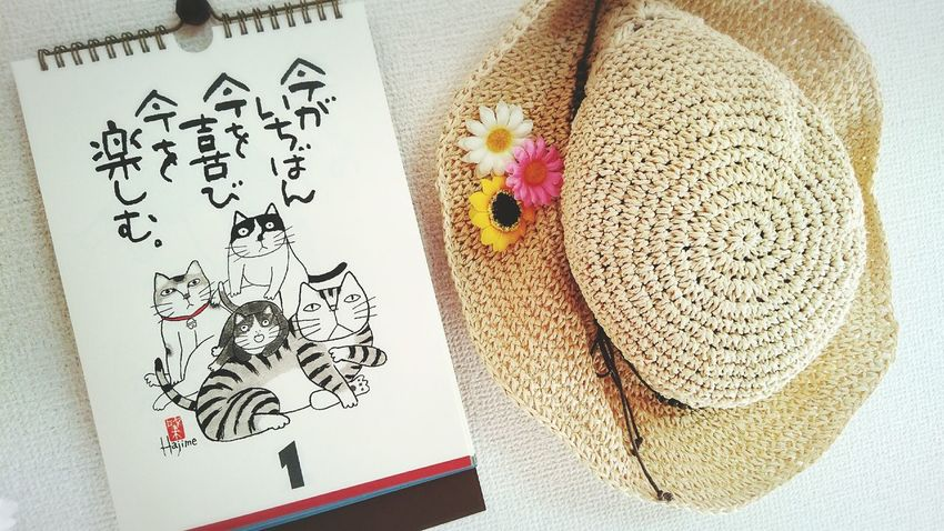 Calendar Pic✌ Hat👒 Today :) Interior Colors Of Nature Natural Photography Happysunday Have A Nice Day♥