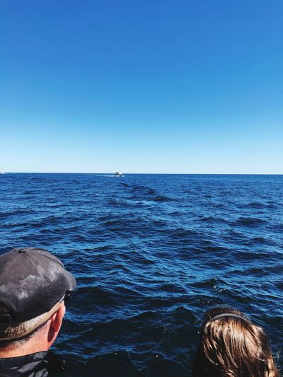 Rear view of man in sea against clear blue sky