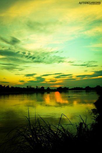 Sunset Sunset LoveSunset Streamzoofamily Savestreamzoo