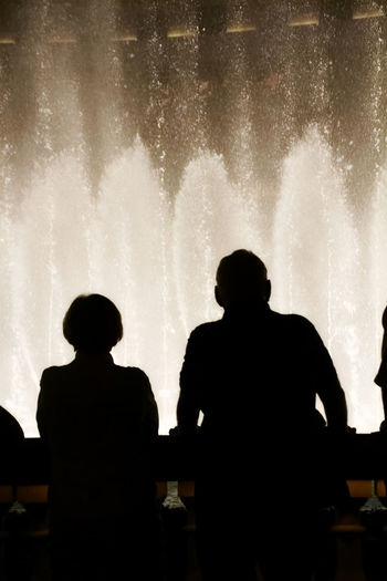 Rear view of silhouette people looking at fountain