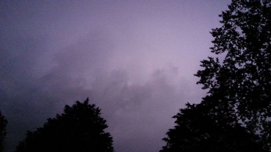 Nature Tree No People Outdoors Sky Night Storm Cloud Lightning Behind Clouds