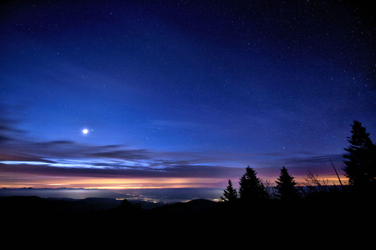 Sky Scenics - Nature Night Beauty In Nature Silhouette Tranquil Scene Tranquility Tree Star - Space Space Plant No People Nature Astronomy Cloud - Sky Idyllic Landscape Environment Blue Star