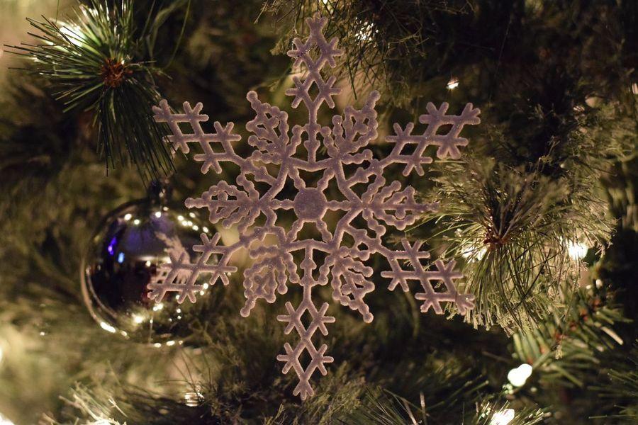 Snowflakes on the tree. Christmas Christmas Tree Christmas Decoration Decoration Christmas Ornament Christmas Lights Close-up No People Holiday Tree