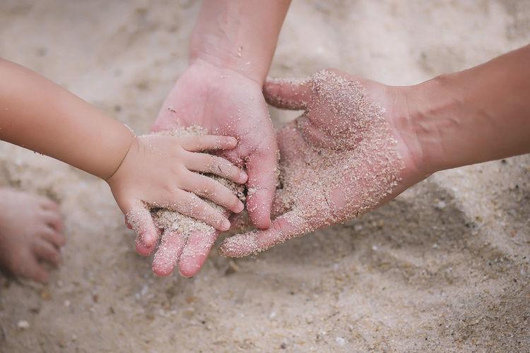 Family Family Fatherhood Moments Love Mother Motherhood Beach Child Father Hand High Angle View Human Body Part Human Hand Sand Togetherness