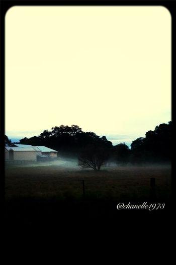 Evening Fog slowly creeping in EyeEm Nature Lover Landscape Semi-rural