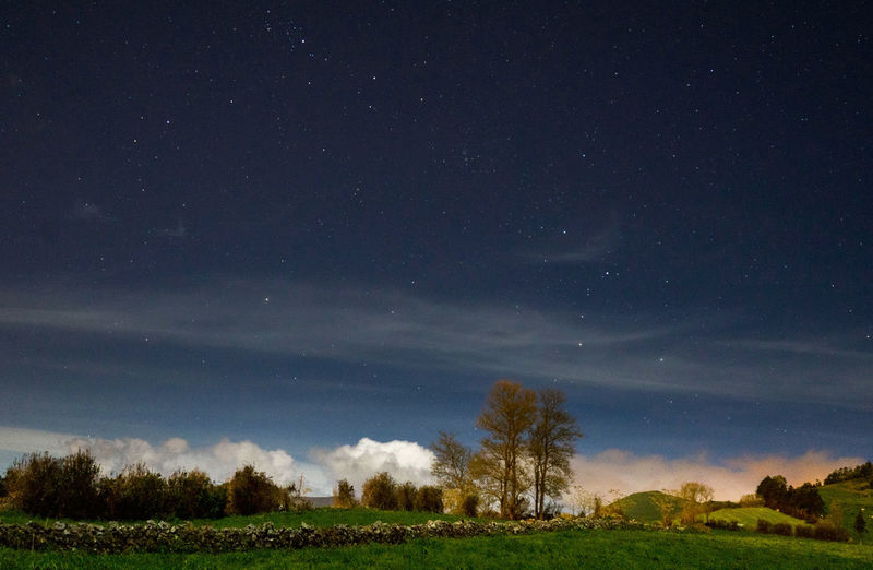 Astronomy Beauty In Nature Cloud - Sky Environment Field Grass Land Landscape Nature Night No People Outdoors Plant Scenics - Nature Sky Space Star Star - Space Tranquil Scene Tranquility Tree