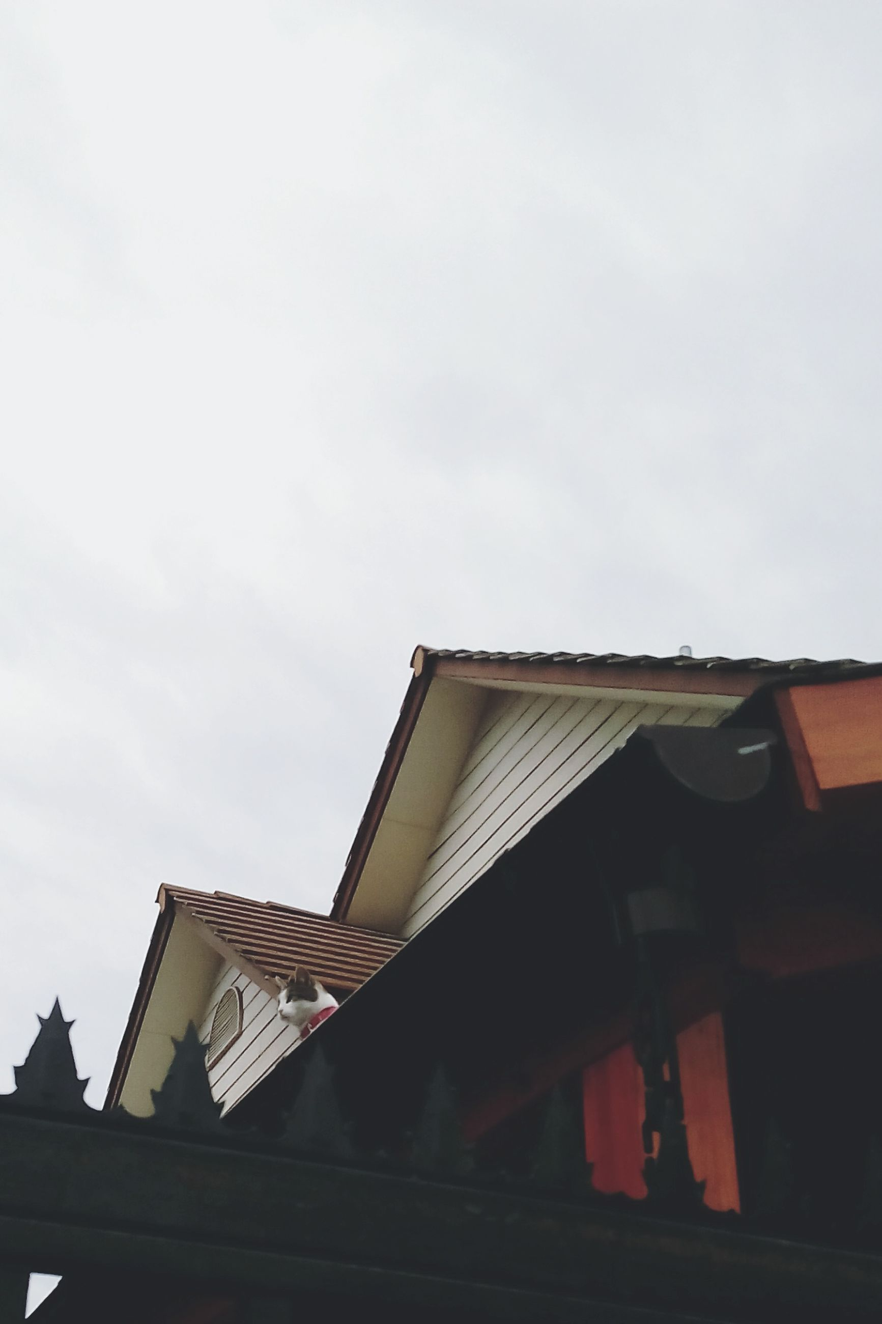 architecture, building exterior, built structure, low angle view, roof, house, sky, residential building, residential structure, high section, building, day, city, outdoors, no people, clear sky, copy space, window, roof tile, cloud - sky