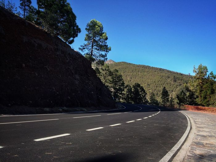 Tenerife road🚘 EyeEm Gallery EyeEm Tenerife Island Tenerife Nature Photography Nature_collection Nature Tree Plant Road Sky Nature Blue No People Day Street Road Marking Asphalt Outdoors Clear Sky Sunlight