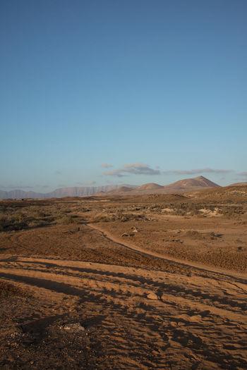 Dust Desert