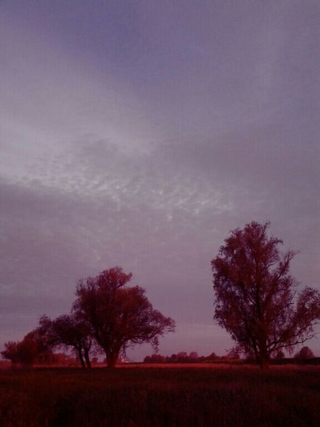 5 AM Early Morning Glow Holland Dutch Landscapes I Love Nature Dutchdreams DreamScapes