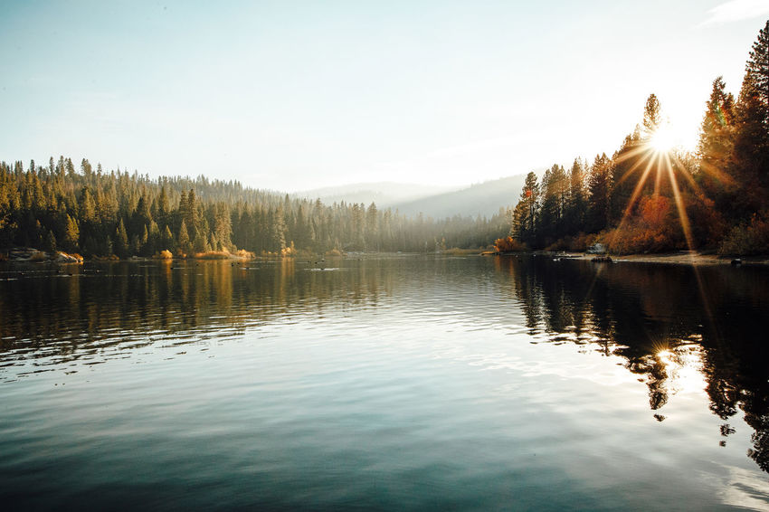 calm lake Water Calm Lake Landscape USA Yosemite National Park WestCoast Westküste California Kalifornien Forrest Walking Waldsee Nature Reflection Beauty In Nature Scenics - Nature Sunlight Sun Reflection Lake Tree Scenics Ruhe