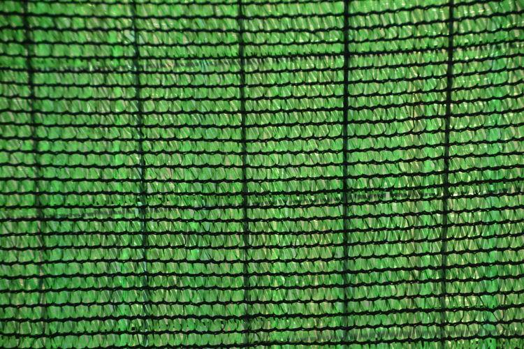 Full frame shot of green fence