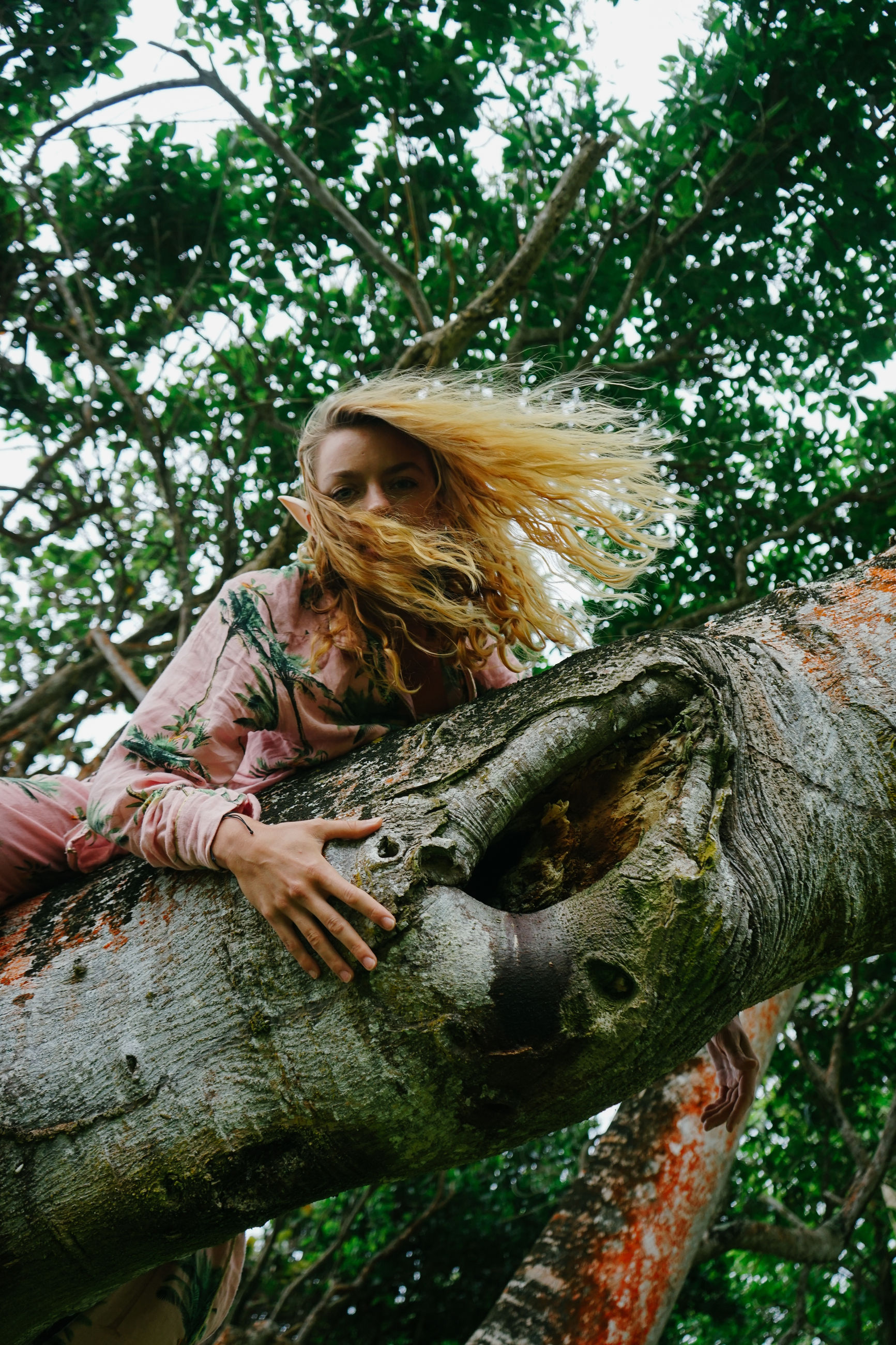 tree, plant, nature, one person, forest, jungle, women, adult, leisure activity, long hair, rainforest, hairstyle, blond hair, green, young adult, leaf, day, lifestyles, branch, flower, outdoors, casual clothing, person, autumn, natural environment, sitting, tree trunk, woodland, female, smiling, emotion, clothing, low angle view, wildlife, trunk, growth, full length, relaxation, sunlight