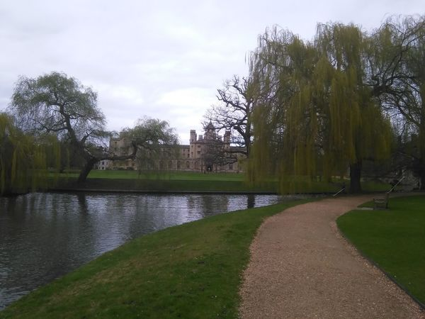 Cambridge University Campus Boats Campus Lawn Old Buildings Places Of Interest River View Summertime Trees