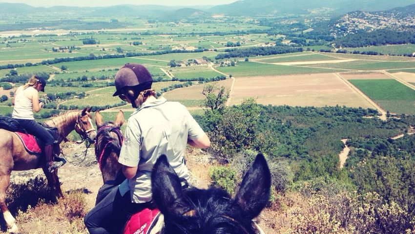 Horse Riding Mountain View Nature Summer