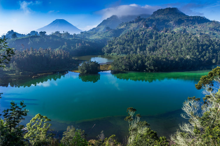 Water, trees and mountain Central Java Leaves Blue Sky Blue Green Clounds And Sky Water Reflections Relaxing Travel Destinations Travel Landscape INDONESIA EyeEm Selects Mountain Lake Reflection Pinaceae Tree Scenics No People Landscape Blue Water Outdoors Beauty In Nature Forest Nature Day Sky Pine Tree