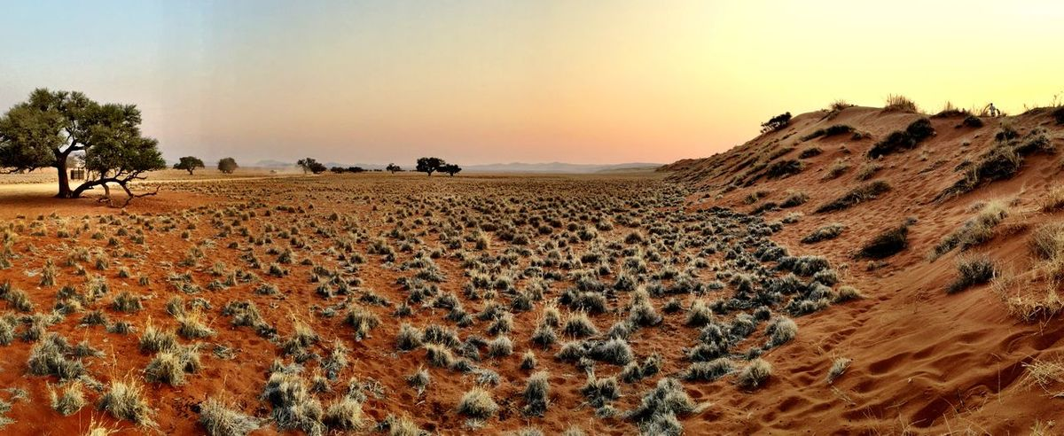 Desert Sossusvlei Desert - Namibia Sunset Dunes Panorama Panoramic Namibia Enjoying The View Magic Places Landscapes With WhiteWall The KIOMI Collection