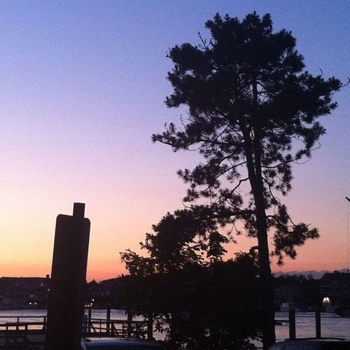 No filter. Color Nofilter Portsmouth Newhampshire Piscatiquariver River Water Sunset Beautiful Home Sky Tree