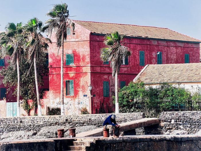 Goree island, Senegal Architecture Building Building Exterior Built Structure Day House Men Nature Outdoors Palm Trees People Plant Real People Residential District Roof Sky Tree