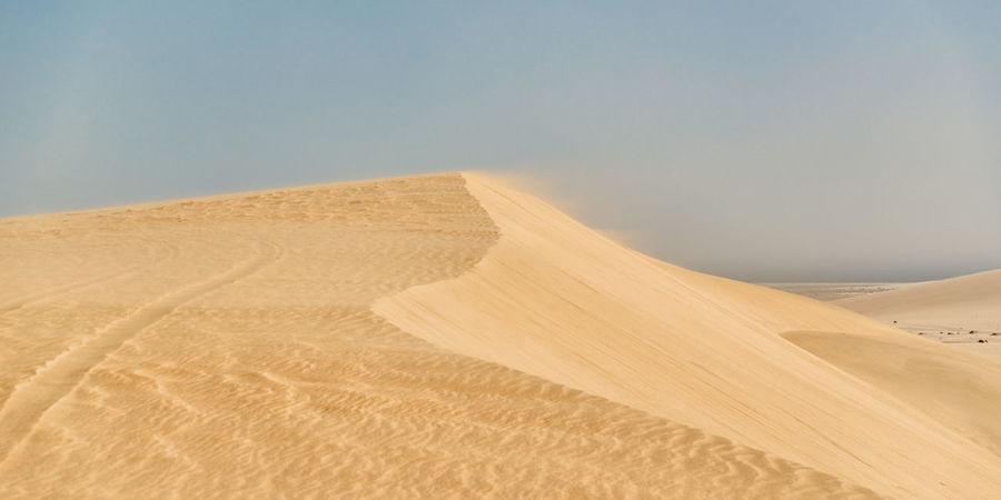 Wind blowing sand over the dune. Khor Al Udeid, South of Doha, Qatar. Dunes Khor Al Udeid Wind Power Arid Climate Barren Beauty In Nature Day Desert Dune Environment Horizon Over Land Land Landscape No People Qatar Remote Sand Scenics - Nature Sky Tire Track