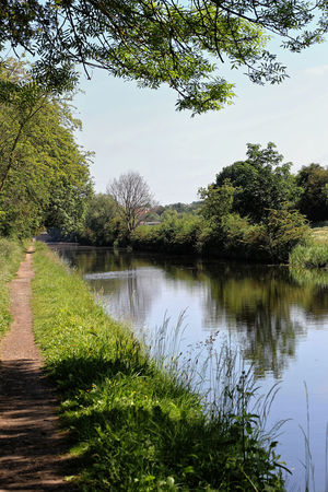 Calder and Hebble Navigation. Grass Reflection Beauty In Nature Canal Canal Path Canals And Waterways Day Grass Green Color Growth Nature No People Non-urban Scene Outdoors Plant Reflection Scenics - Nature Sky Summer Time  Towpath Tranquil Scene Tranquility Tree Trees And Sky Water