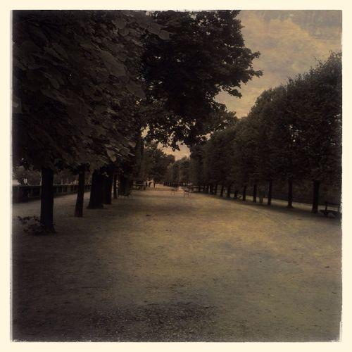 Dans les jardins de Paris IPhoneography Mobileart