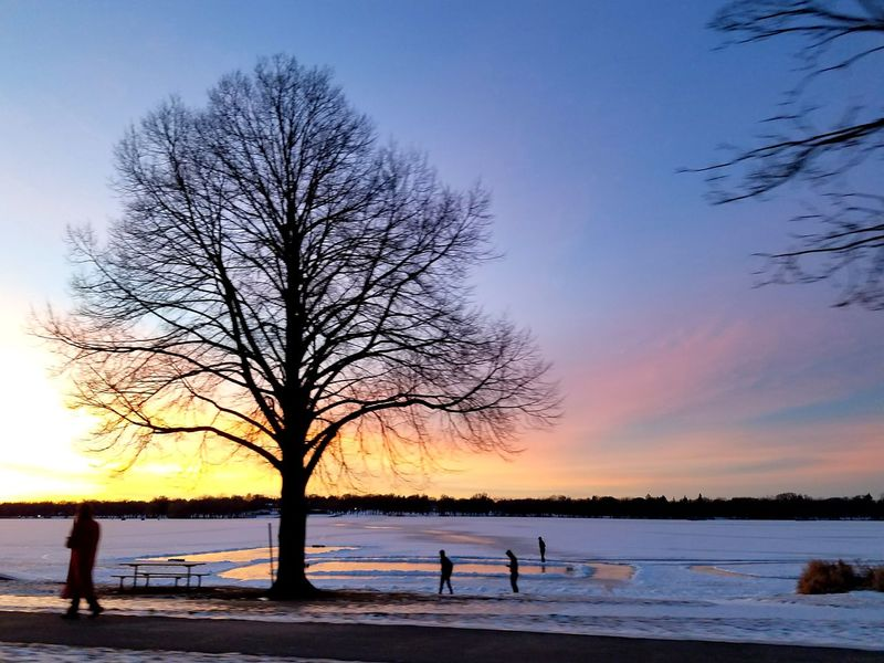 A Colorful Winter Night. Colors Sunsetlover Beautiful Lakeshore Minnesota Silhouette Sunset Sky Beauty In Nature Landscape Scenics Water Lake Winter Bare Tree Horizon Over Water People Outdoors