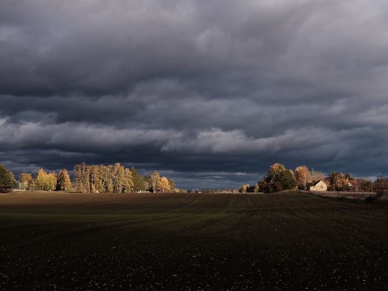 Autumn Skies , Skedet, Sweden. Cloud - Sky Nature Landscape Weather Tranquility Sky Beauty In Nature Scenics Tranquil Scene Storm Cloud Tree Field No People Day Outdoors Rural Scene Agriculture
