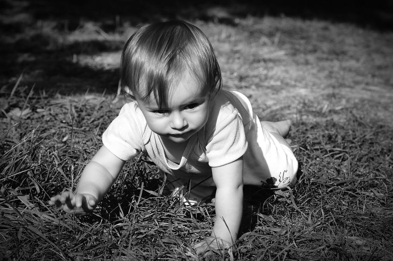 Toddler crawling on grass field