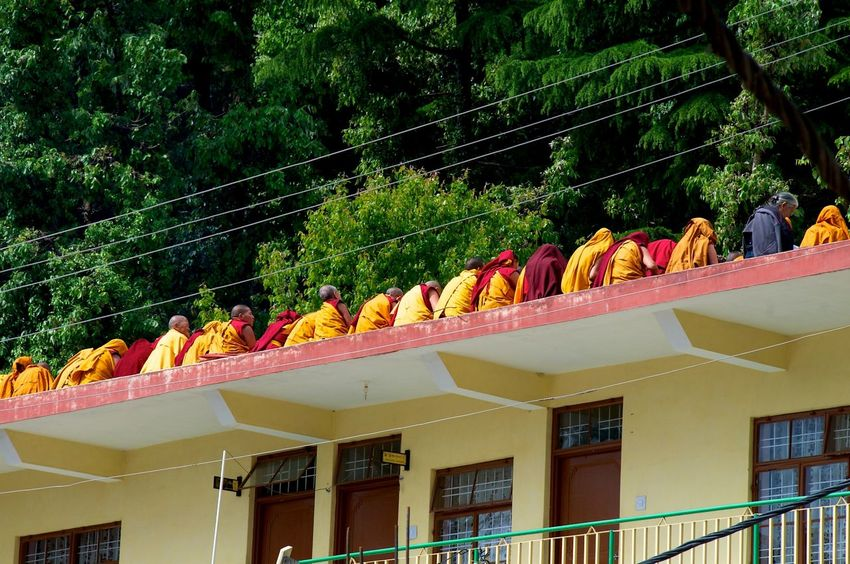 Buddhist Monk Color Colourful Colourful People Dharamshala Enjoying Life Exiled Monks Low Angle View McCloud Gange Monks In Dharamshala Monks In Ex Monochrome North India Monks Northern India Outdoors, Day Row Of Monk Row Of People Sitting In A Row Sitting On A Roof Sitting On Veranda Tibetan Buddists Tibetan Monks Tibetans In Exite Tibetans In India Veranda