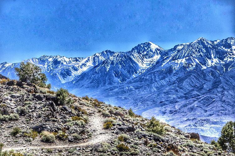 A view from Bristle Cone National to the Eastern sierra Nevada, California Sky Scenics - Nature Beauty In Nature Nature Day Plant Winter