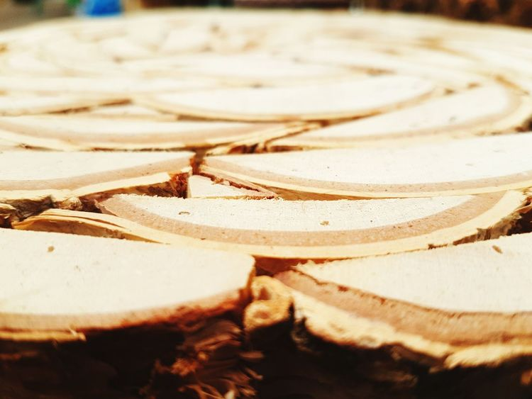 Log rolled Close-up No People Day Roll Logs Log Spiral Design Spiral Pattern Pattern Design Patterns Seat Posts Round Half Pattern Pieces Patterns & Textures Pattern, Texture, Shape And Form Pattern Indoors  Spiral Garden Center Garden Centre Wood - Material Wood Wooden