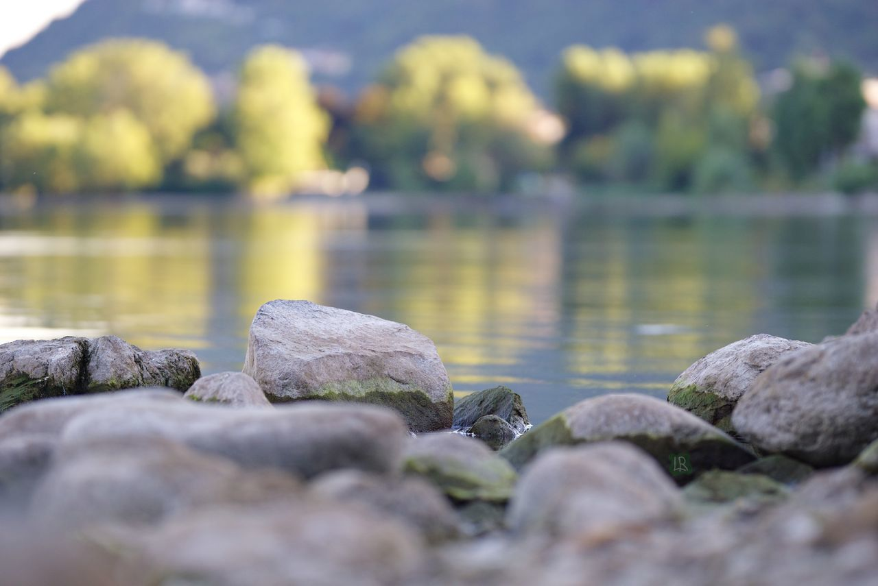 water, rock, solid, rock - object, selective focus, day, beauty in nature, nature, lake, no people, tranquility, stone, scenics - nature, tranquil scene, outdoors, stone - object, close-up, pebble