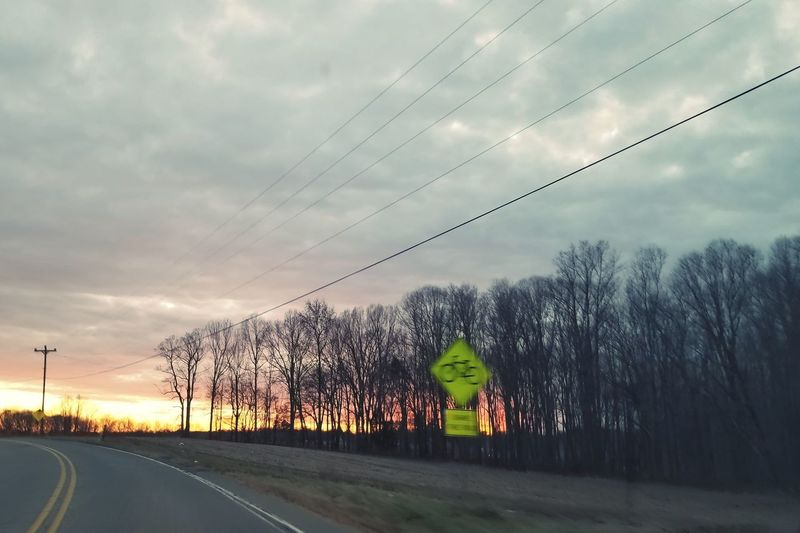 Sunrise Trees Biking Bicycling Telephone Line Road Power Line  Sky Cloud - Sky