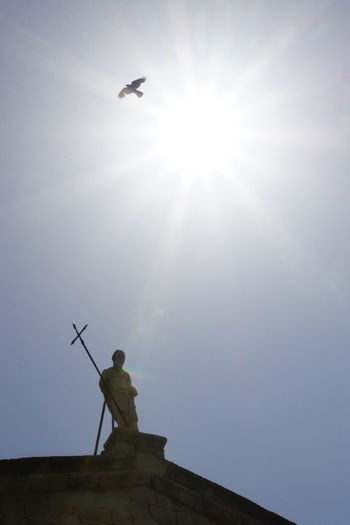 Bird Flying High Blue Sky And Sunbeam Low Angle View Middaysun No People No Photoshop, No Filter Outdoors Religious Statues Sony A6000 Statue Holding A Cross