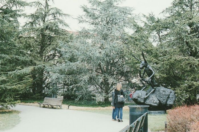 Sculpture garden National Gallery Of Art Washington DC March 2015 (Fujifilm Natura 800)