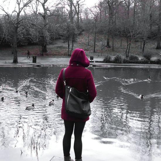 Ducks Hood Monochromatic Queens Park Glasgow