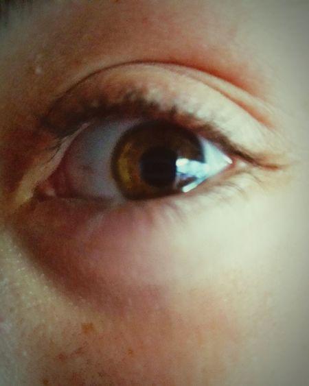 Kids Teens Nut Wood Dry Stuffy Athlete Clam Nature Bay Palm Tropical Sand Eyeball Eyelash Eyesight Eyebrow Iris - Eye Human Eye Sensory Perception Child Eye Looking At Camera Vision Hazel Eyes  Iris Eyelid Eye Color Young Sight Eyeshadow Glasses Extreme Close-up Macro
